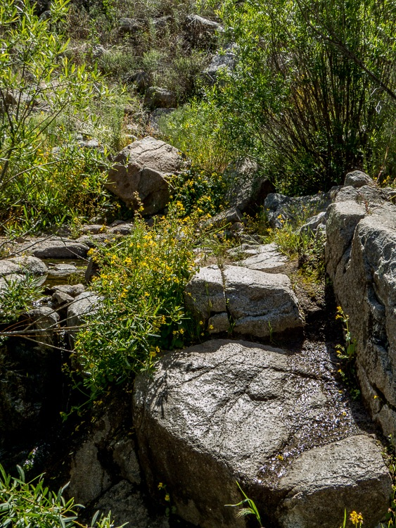 Boulders along the path