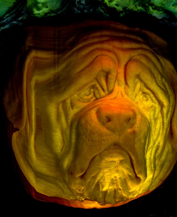 Carved Bulldog in Brine
