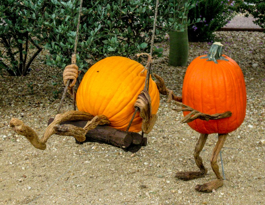Swinging pumpkins
