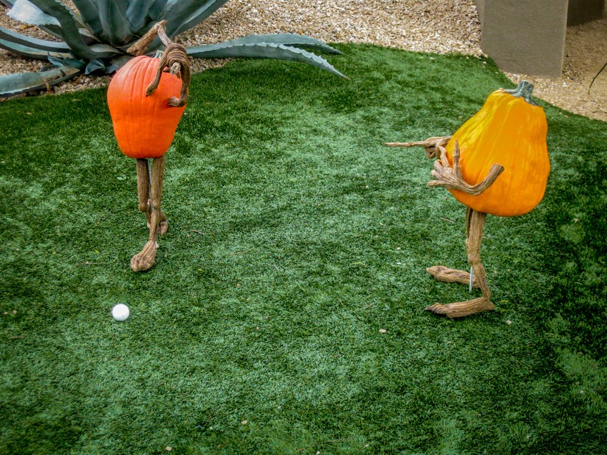 Pumpkin golf