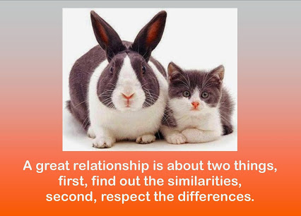 Similarities and Respect for Differences Make Great Friends