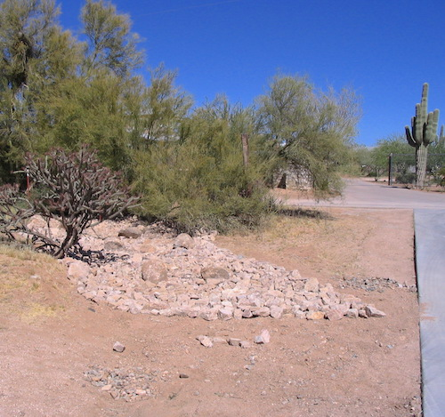Building a Wadi in the Sonoran Desert