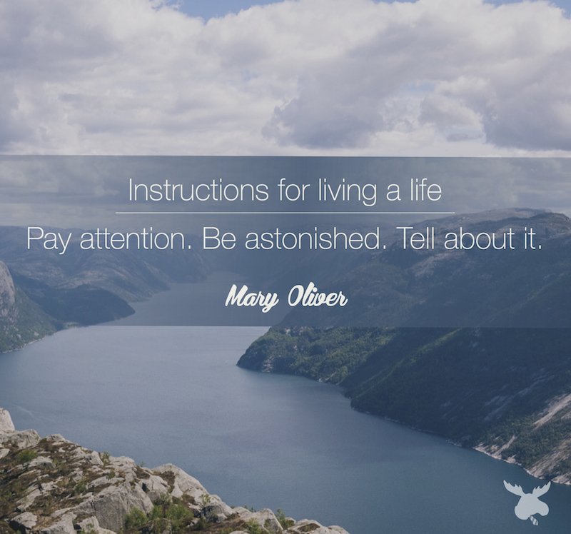 Instructions for living a life. Pay attention. Be astonished. Tell about it.- Mary Oliver