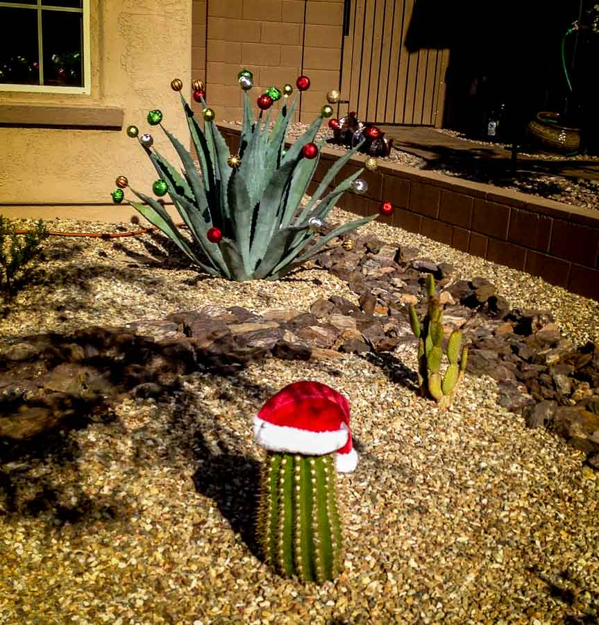 Colorful variety of Christmas balls on an agave