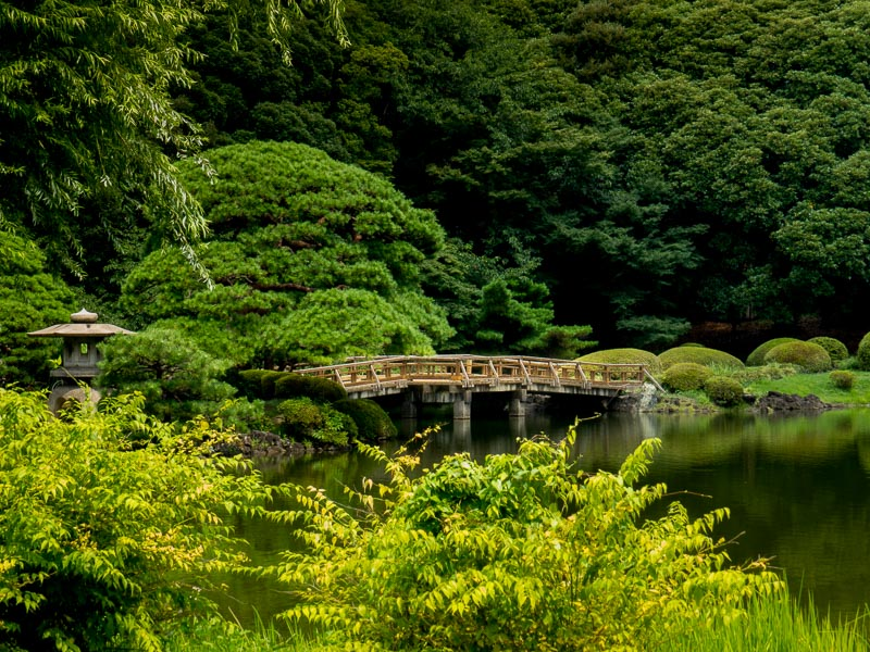 Large bridge over wide area of pond separating two garden areas