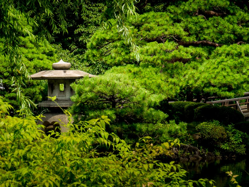 Tōrō  or Japanese lantern near water feature