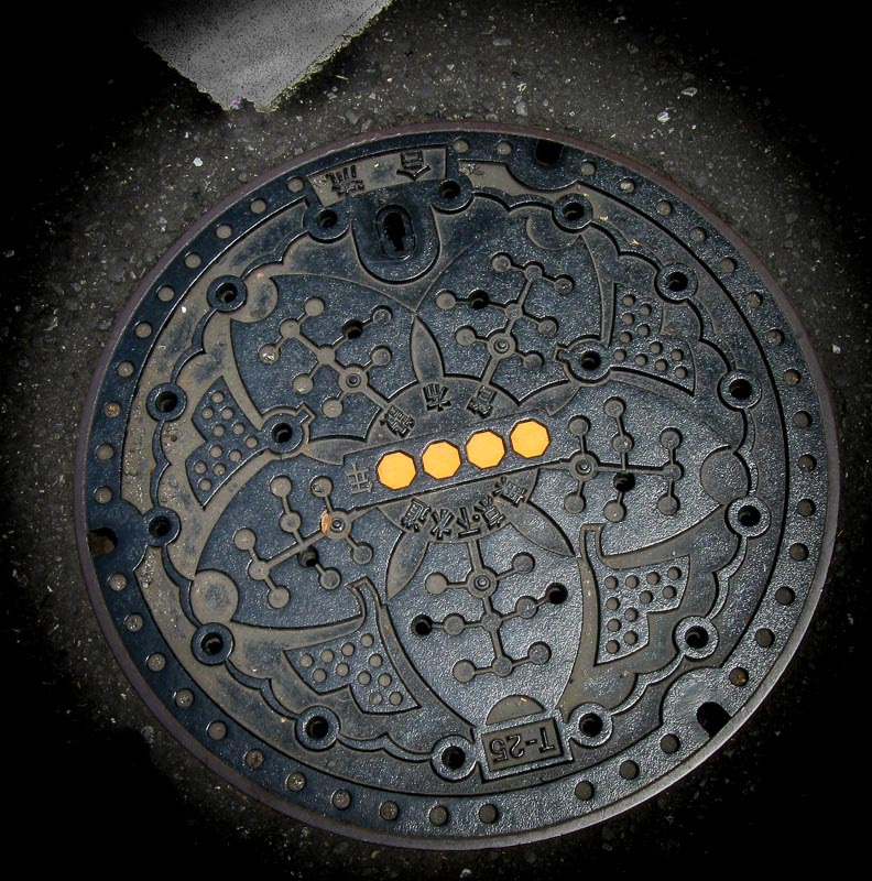 Intricate Japanese sewer cover