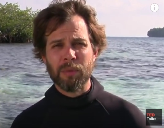 Thomas Peschack - Environmentalist and Photographer
