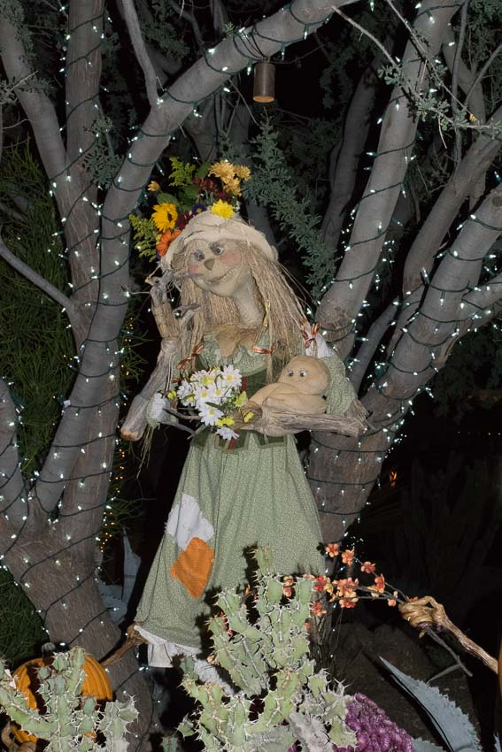 Enchanted Pumpkin Garden-2016-Carefree, AZ