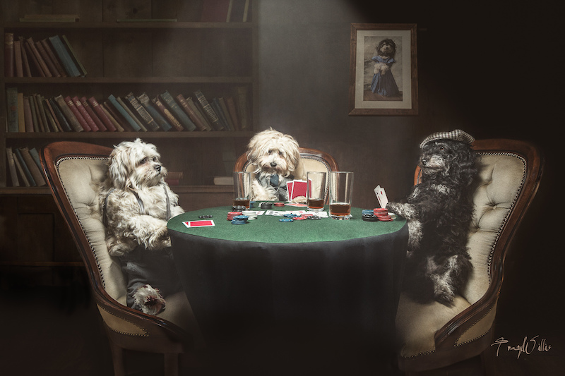 Dogs Playing Poker by Tracy Willis ala Coolidge