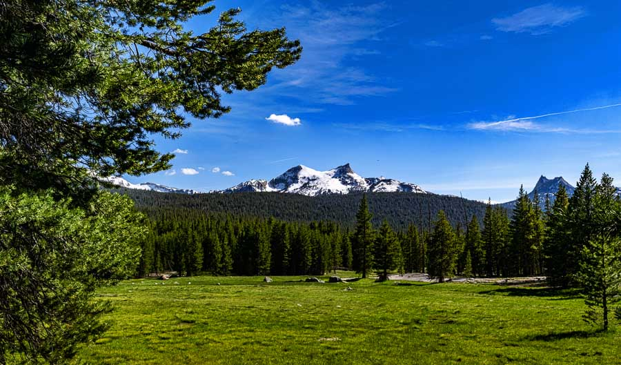 Tuolumne Meadows viewed from the Lembert Dome Trail