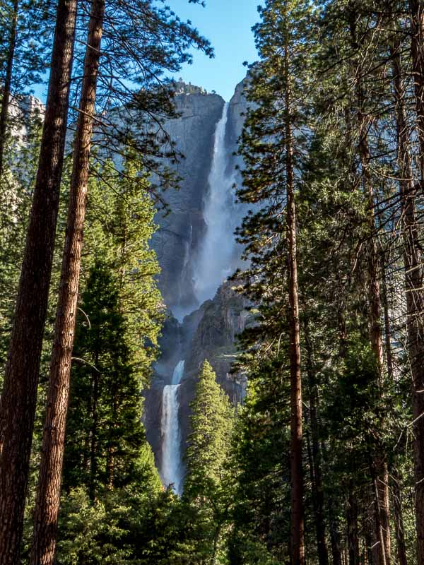 Yosemite Falls as seen near ths start of the Valley Loop Trail