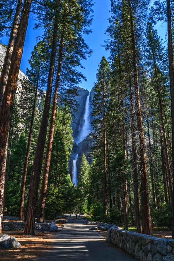 Morning at Yosemite Falls