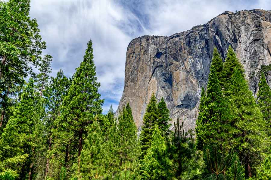 El Capitan from the meadow