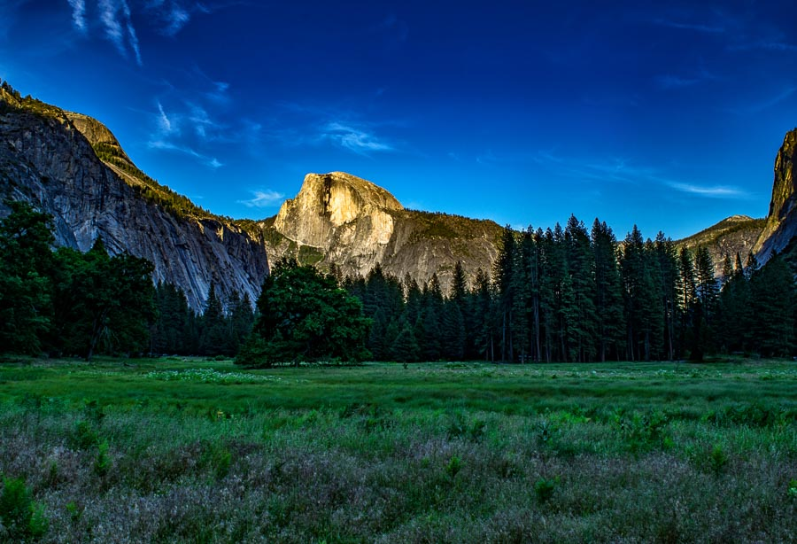Half Dome Meadow at Sunset