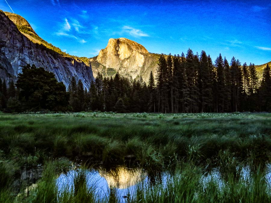 Half Dome from the Ahwahnee Meadow with a reflection