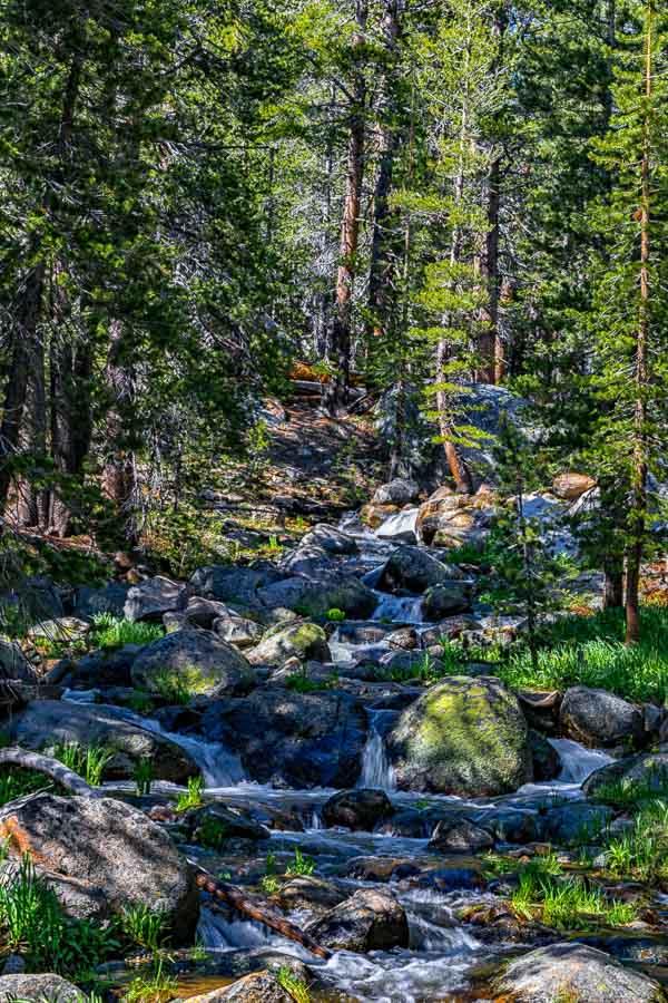 Lembert Dome Trail's beauty
