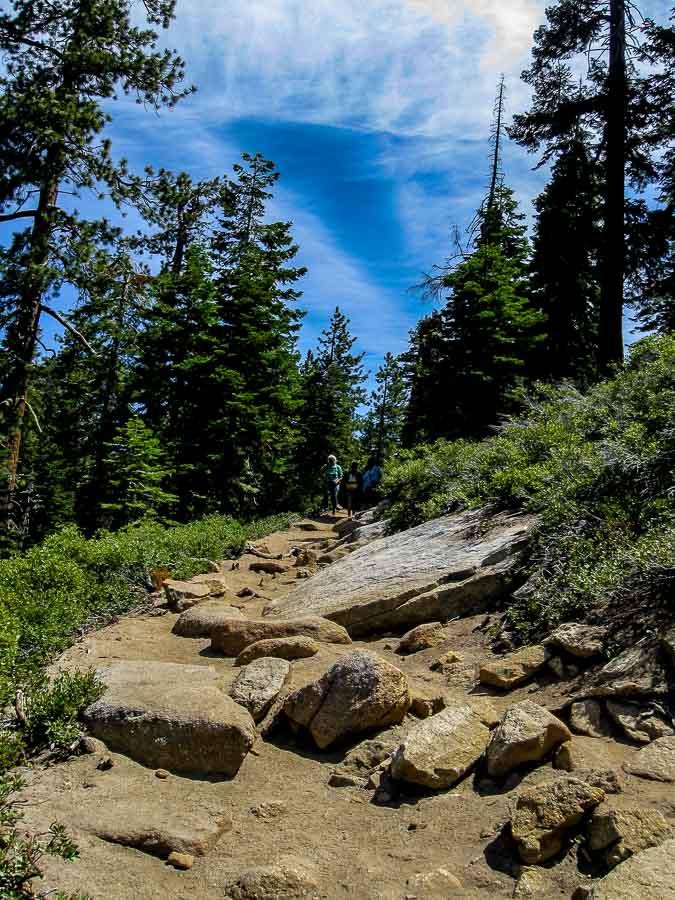 Sentinel Dome Trail - Near the Start