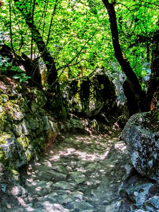 The Valley Loop Trail has varied terrain