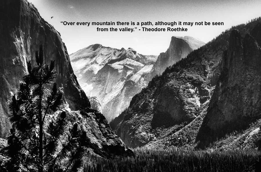 Theodore Roethke - Tunnel View Picture Quote