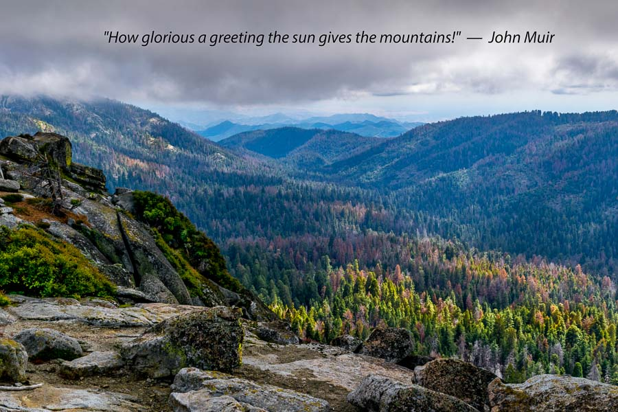 Kings Canyon Ca Photograph John Muir Quote Jbrish Quips