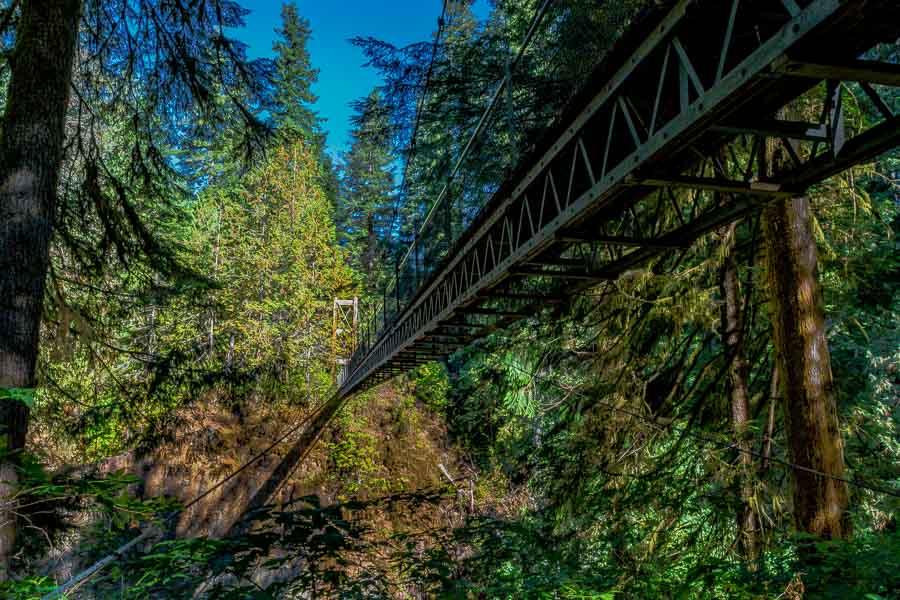 Cables holding Drift Creek Falls Suspension Bridge