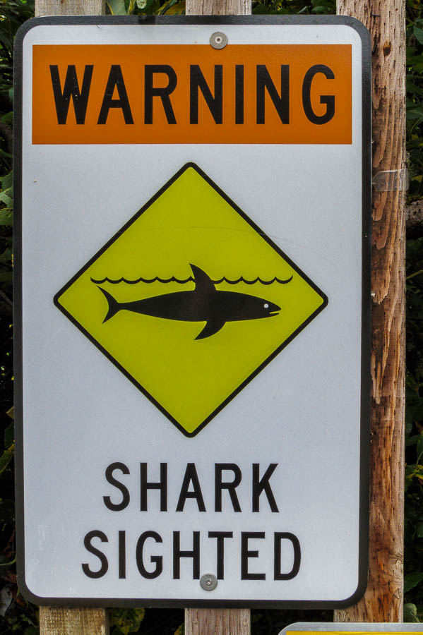Unusual shark sighting sign