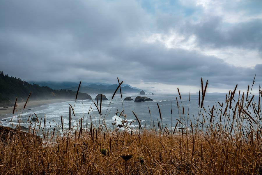 Cannon beach through the grassland