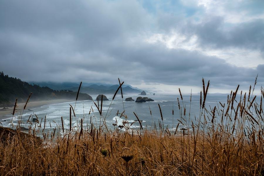 Cannon beach through the grassland