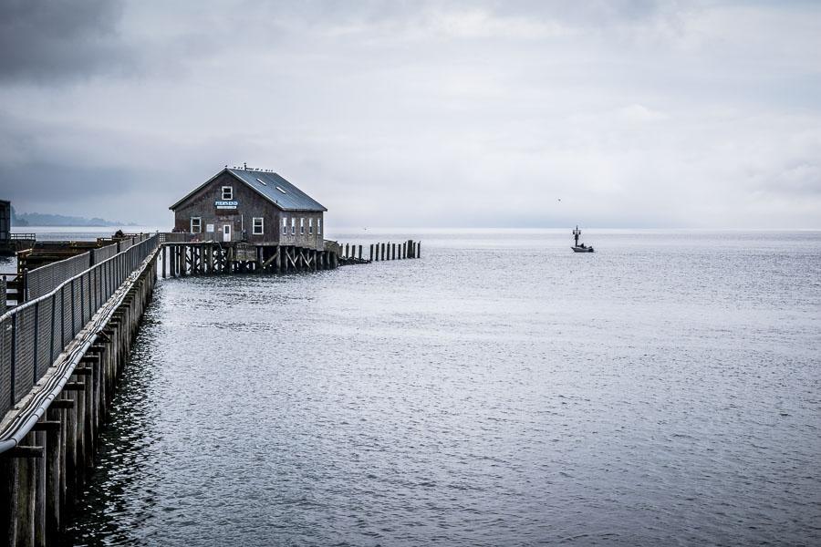 Beautiful picture of the Garibaldi Pier