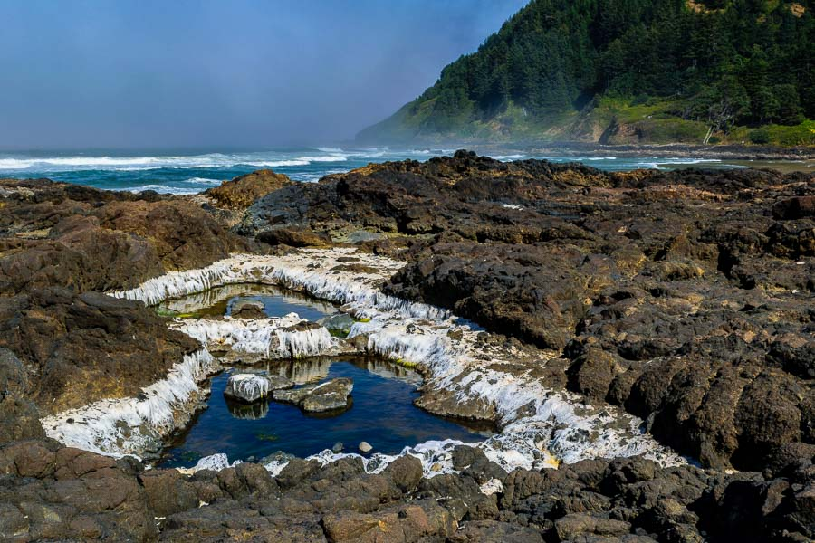 Ocean basin and tide pools to explore