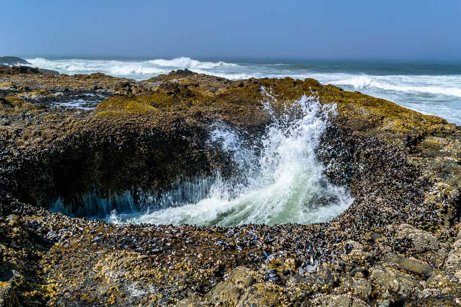 The Devil's Punchbowl at Cape Perpetua