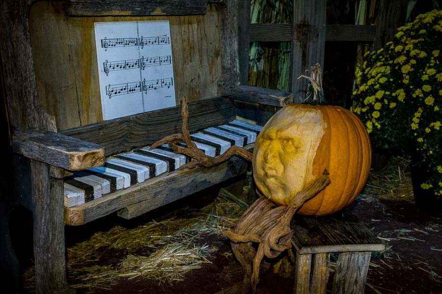 Pumpkin piano man