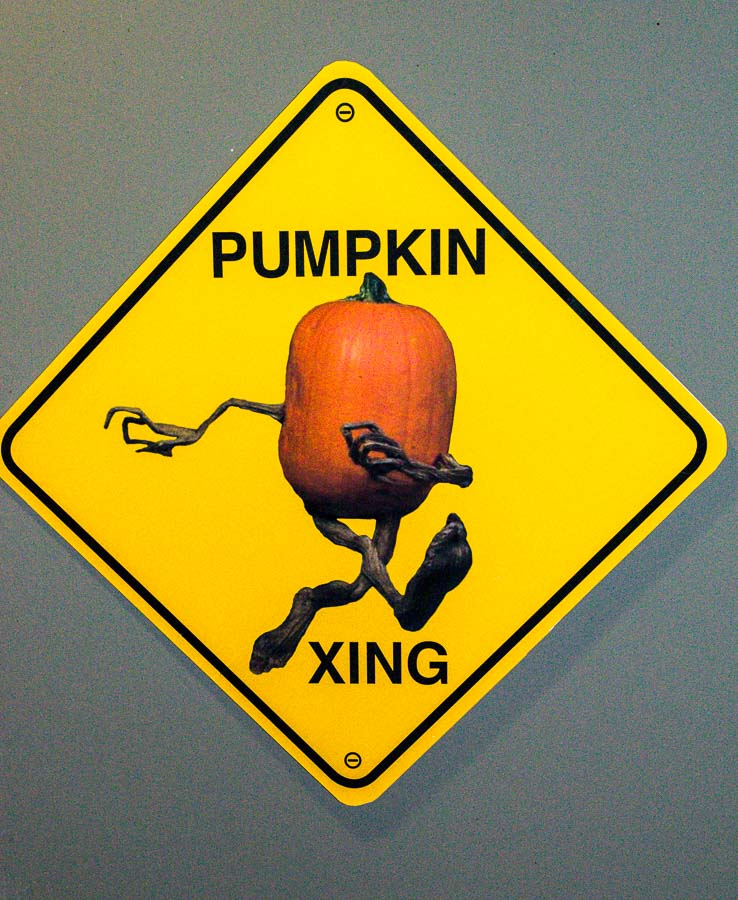 Keep an eye our as there are pumpkins at nearly every turn