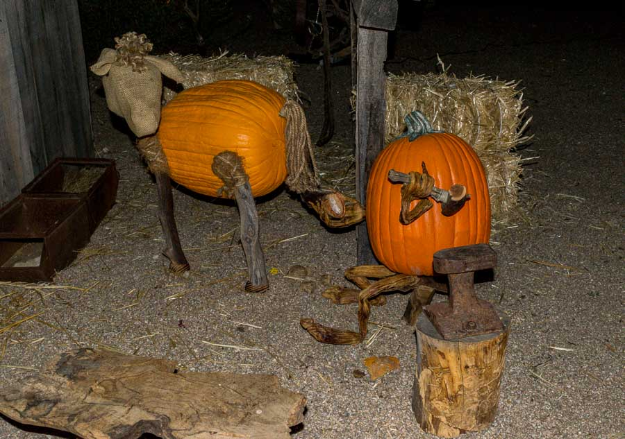 A pumpkin farrier is shoeing a horse