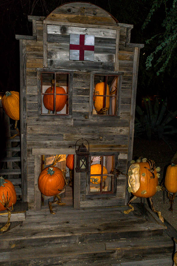 With all the pumpkins in town, sometimes  medical care may be needed