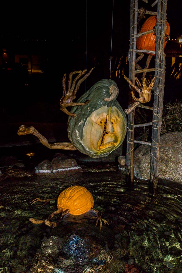 Hard to tell if this pumpkin is having fun or not