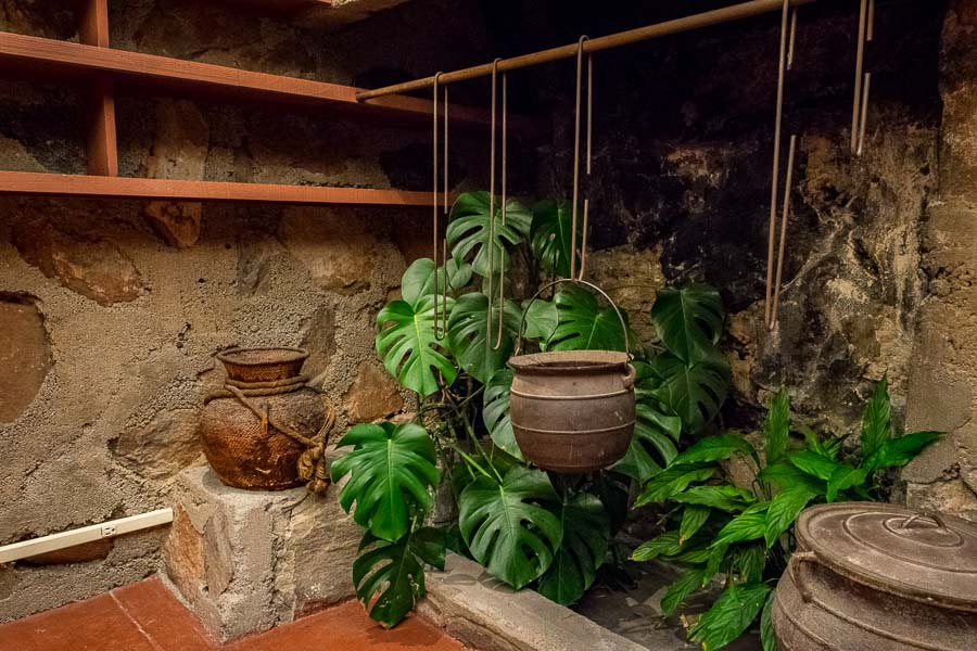 Office fireplace with plants