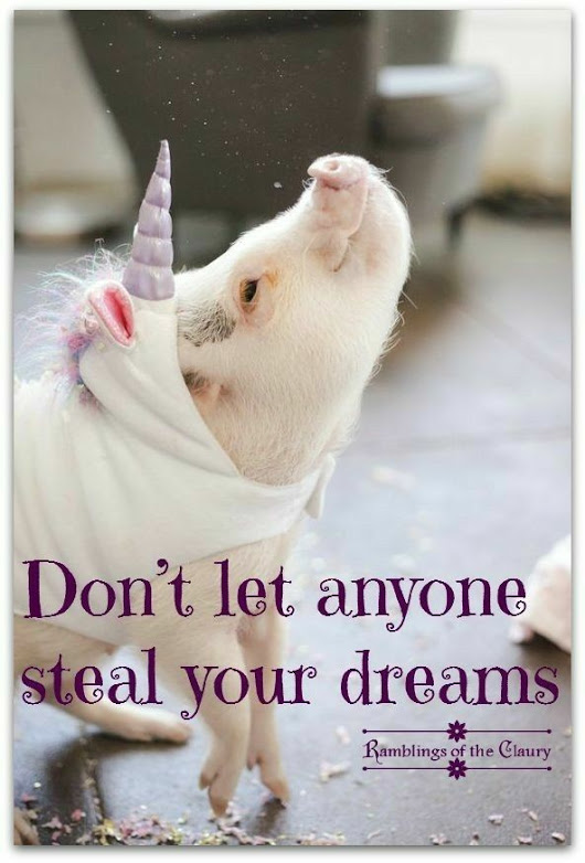 Don't let anyone steal your dreams.