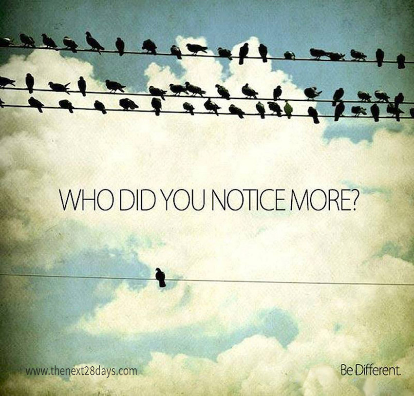 Who did you notice more?