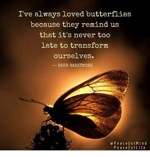 I always loved butterflies, because they remind us that it's never too late to transform ourselves. - Drew Barrymore