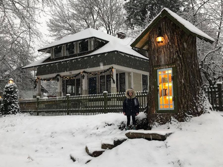Sharalee Armitage Howard stands in front of her tree-stump library